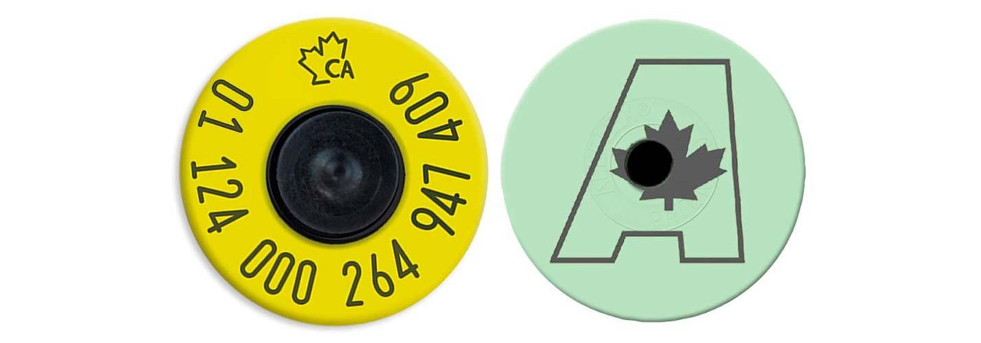 Allflex-CAA-RFID-Indicator