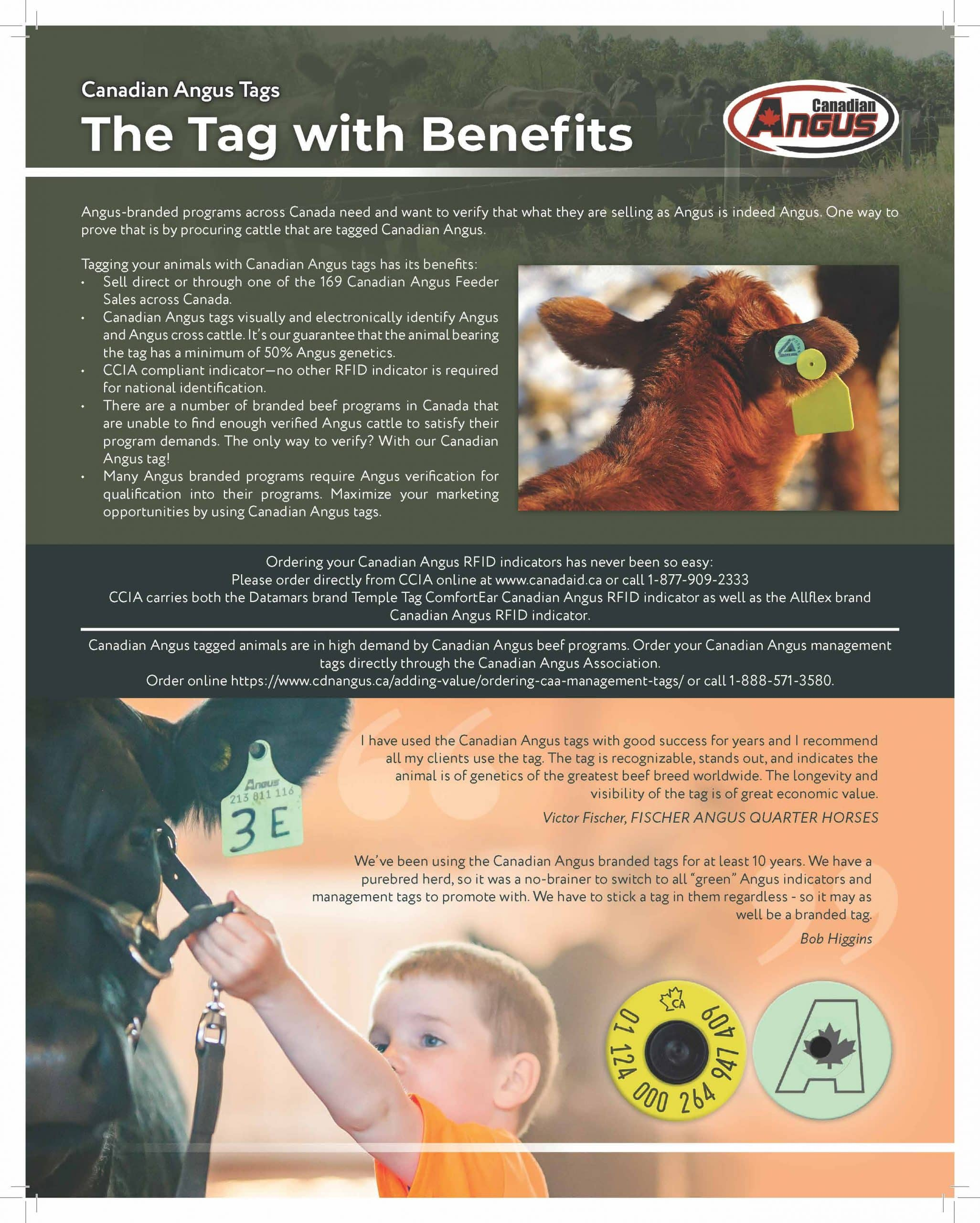 Canadian Angus Tag Ad
