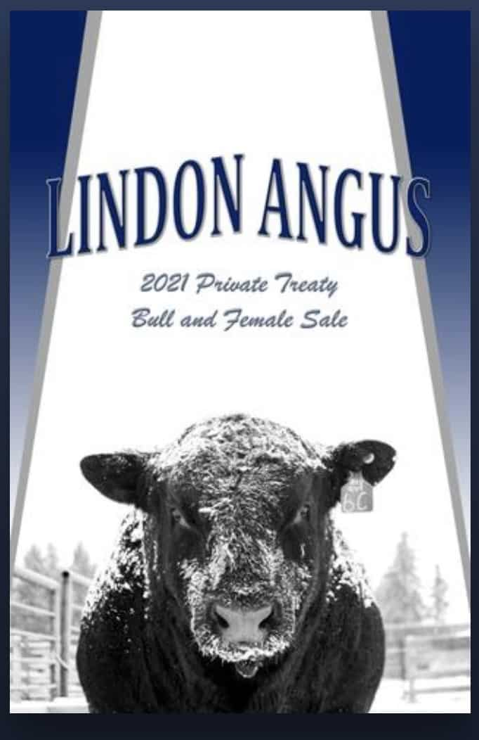Lindon Cover 2021