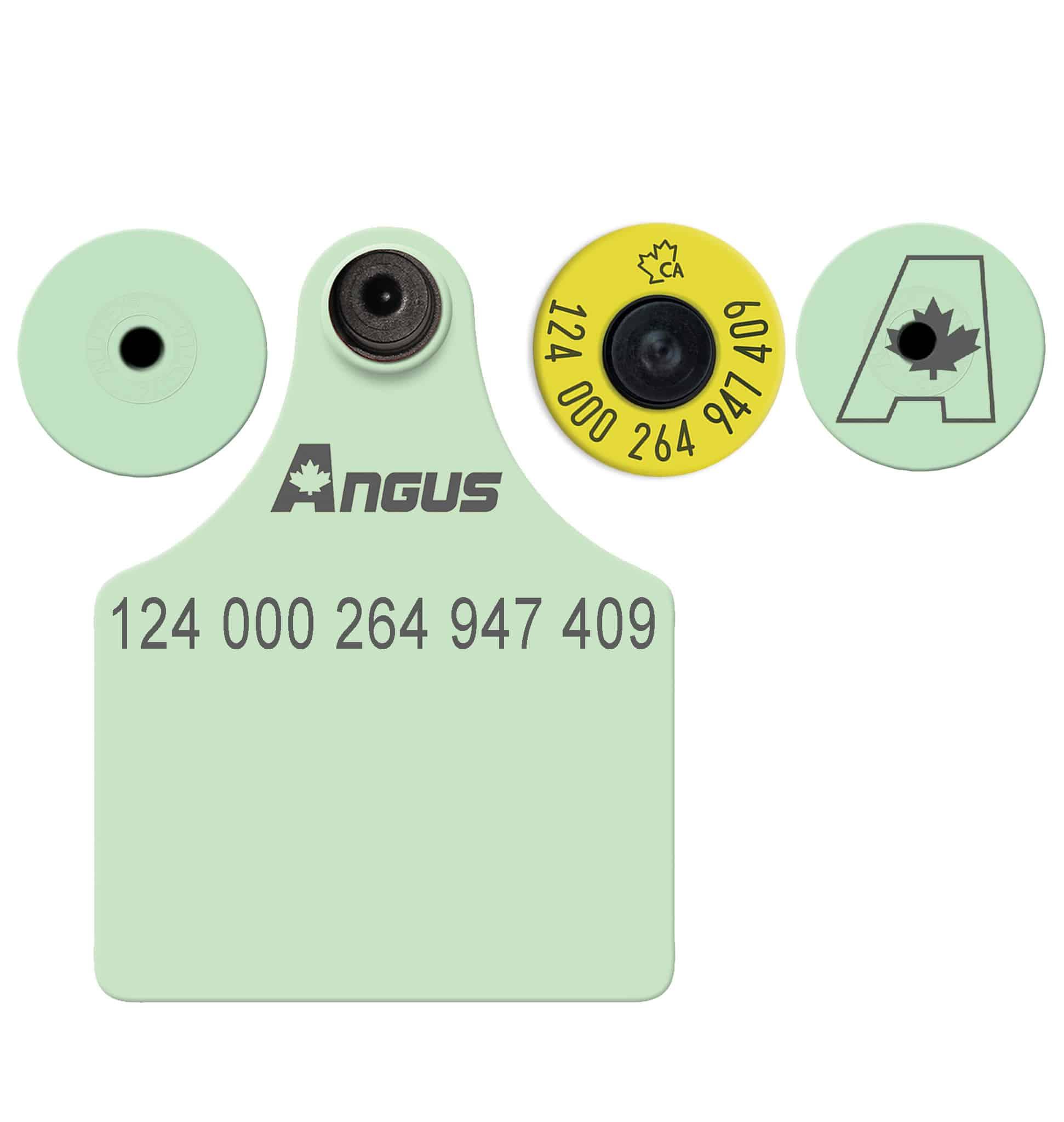 Matching RFID & Maxi Dangle Set