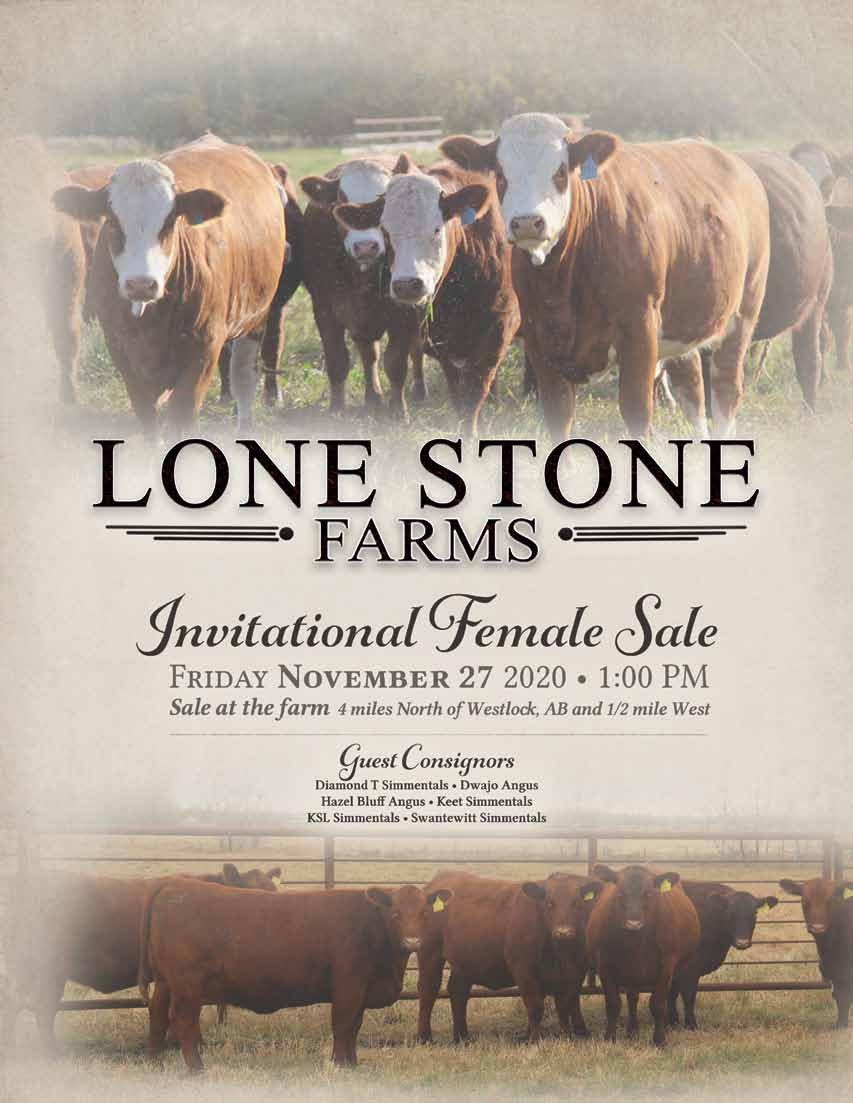 Pages from Lone Stone 2020 female catalog