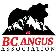 bc-angus