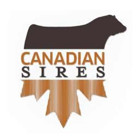 canadian-sires-logo
