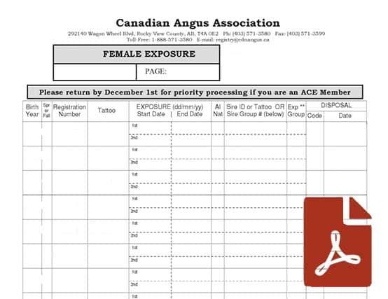 female-exposure-worksheet-thumb