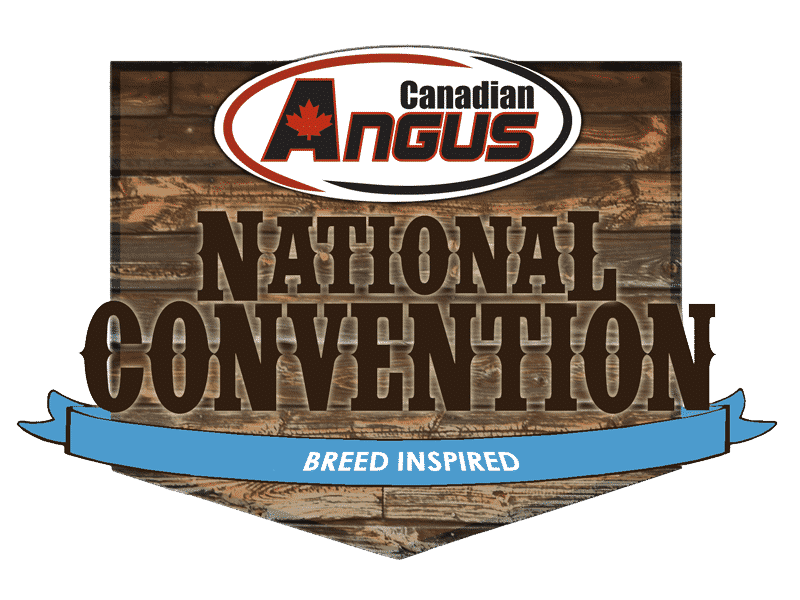 national-convention-2020